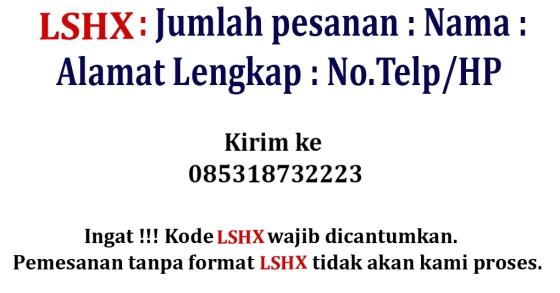 LSHX post 2